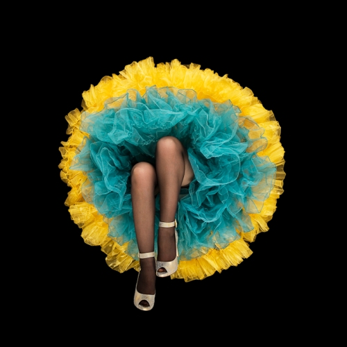 crinoline-flowers-1