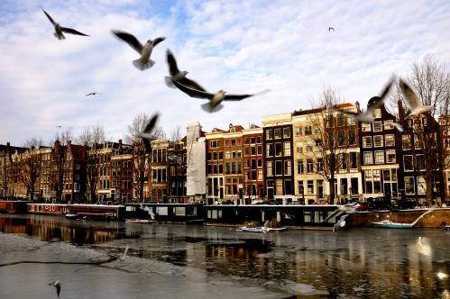 Frozen Amsterdam 3