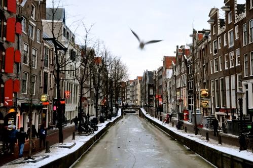 Frozen Amsterdam 4